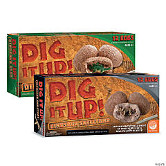 Dig It Up! Dinosaur Eggs and Dinosaur Skeletons: Set of 2