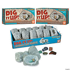 DIG IT UP! Minerals and Fossils: Set of 3