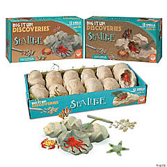 DIG IT UP! Sea life Set of 3