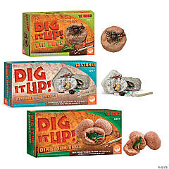 Dig it Up! Set of 3