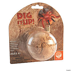 Dig It Up! Single Bug Egg