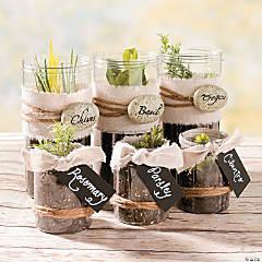 DIY Mini Herb Garden Idea