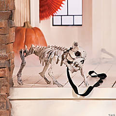 Dog Skeleton with Leash