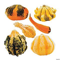 Jumbo Gourd Cutouts