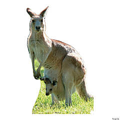 Kangaroo Stand-Up