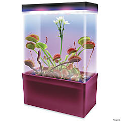 LED Carnivorous Creations