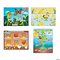 Life Cycle Sticker Scene Assortment