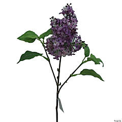 Lilac Spray 30