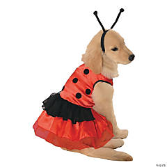 Lovely Ladybug Costume for Dogs