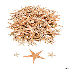 Mini Natural Sugar Starfish