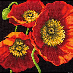 Needlepoint Kit -Red Poppy Trio