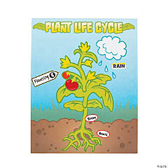 Plant Life Cycle Sticker Scenes