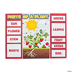 Plant Part Sticker Scene