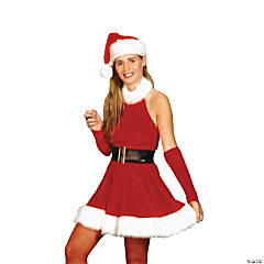 Santa's Inspiration Adult Women's Costume