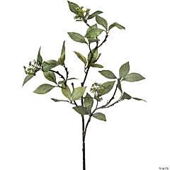 Seeded Bay Leaf Branch 32