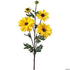 "Shasta Daisy X3 + Bud 24""-Yellow"