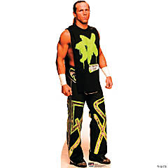 Shawn Michaels WWE Stand-Up