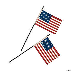 Small Cloth Americana Flags