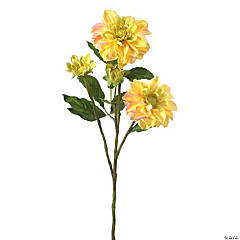 "Teacup Dahlia X2 + 3 Buds 30""-Yellow"