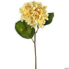 "Veranda Hydrangea 19""-Butter"