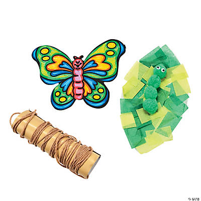 Color Your Own Butterfly Life Cycle Craft Kit