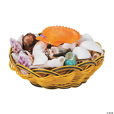 Genuine Sea Shell Assortment