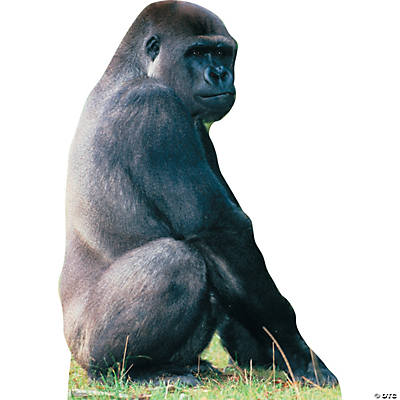 Gorilla standing up - photo#11