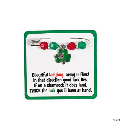Ladybug Shamrock Pin Craft Kit
