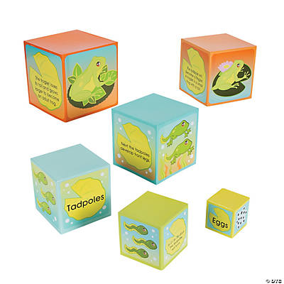 Life Cycle of A Frog Nesting Box Set