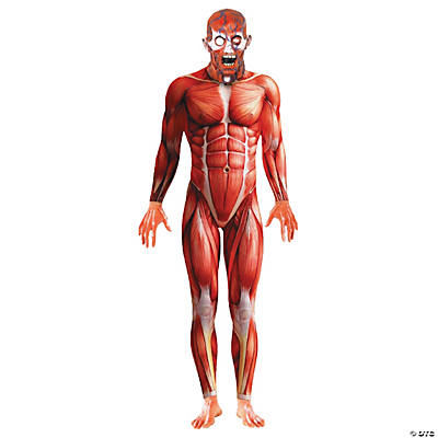 Men's Anatomy Man Costume