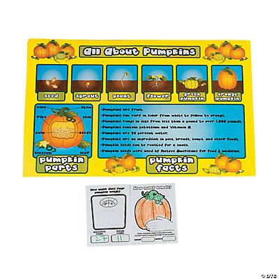13 pc. Pumpkin Observation Kit