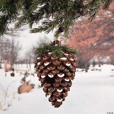 Pinecone Birdhouse
