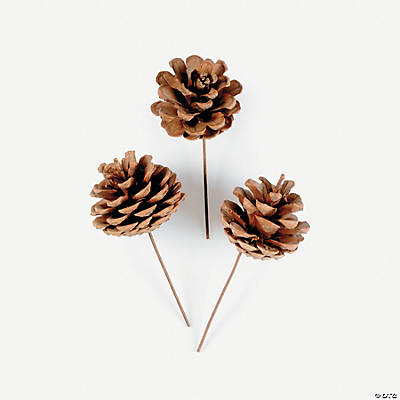 Pinecone Pick