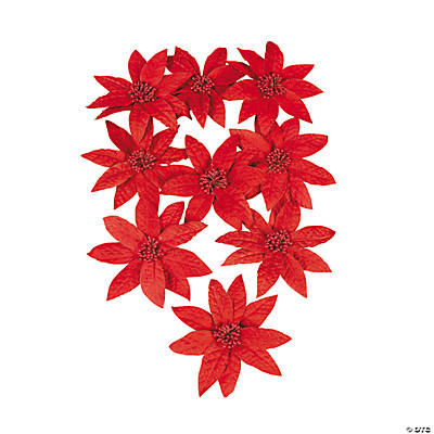 12 Poinsettia Flowers