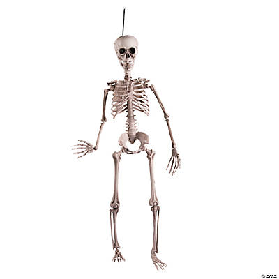 Rugged Posable Skeleton