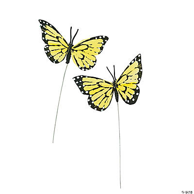 Yellow Feather Butterflies