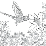 Hummingbird Adult Coloring Page Free Printable