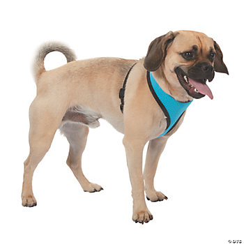 Mesh Dog Harness - Blue XS