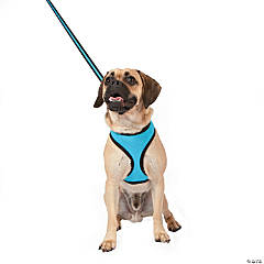 Mesh Dog Lead - Blue