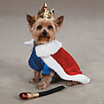 ROYAL PUP COSTUME W/ SQUEAKER TOY