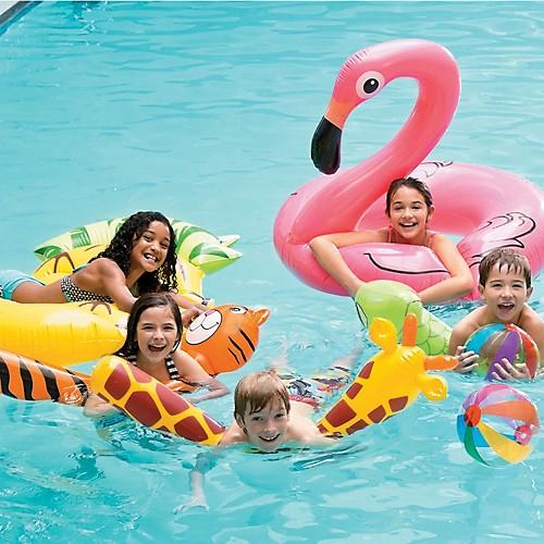 Pool Floats & Noodles
