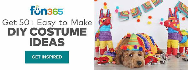 Fun DIY Costume Ideas
