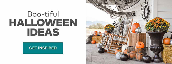 Boo-tiful Halloween Ideas