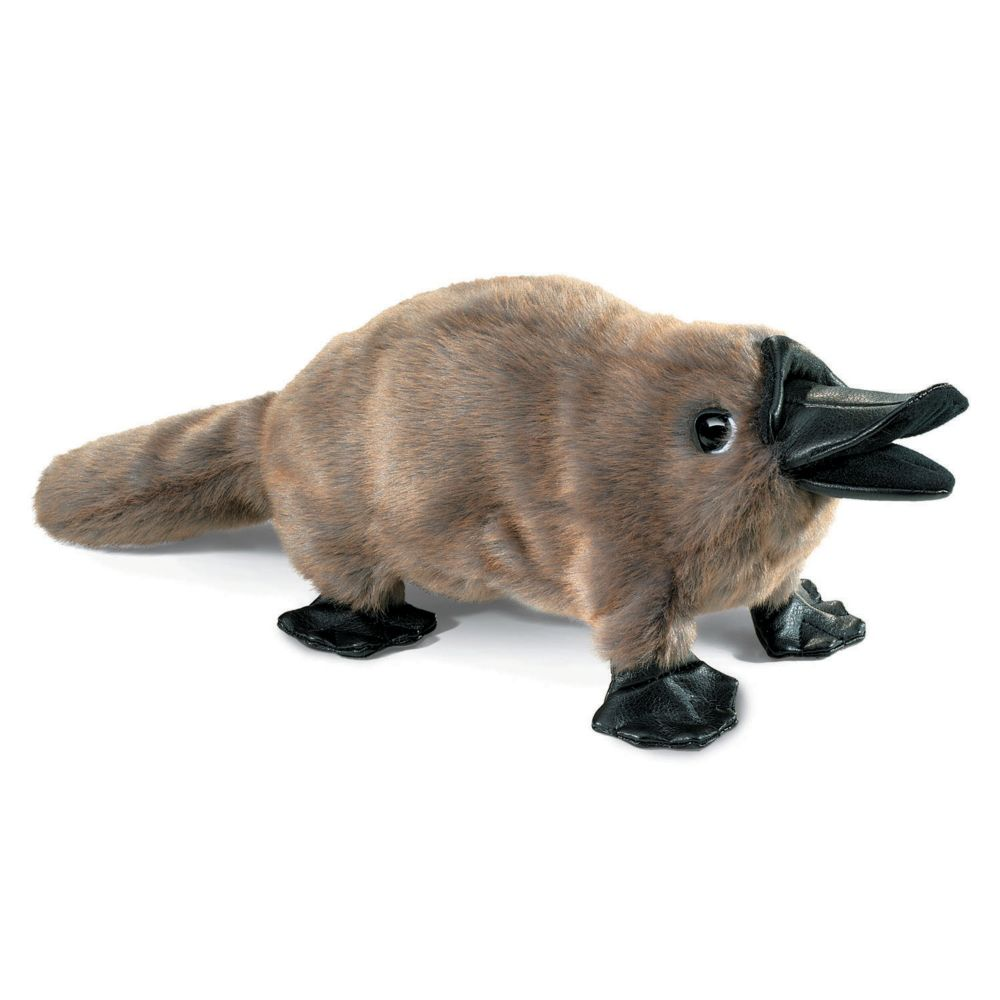 Baby Platypus-3037 Toy From MindWare