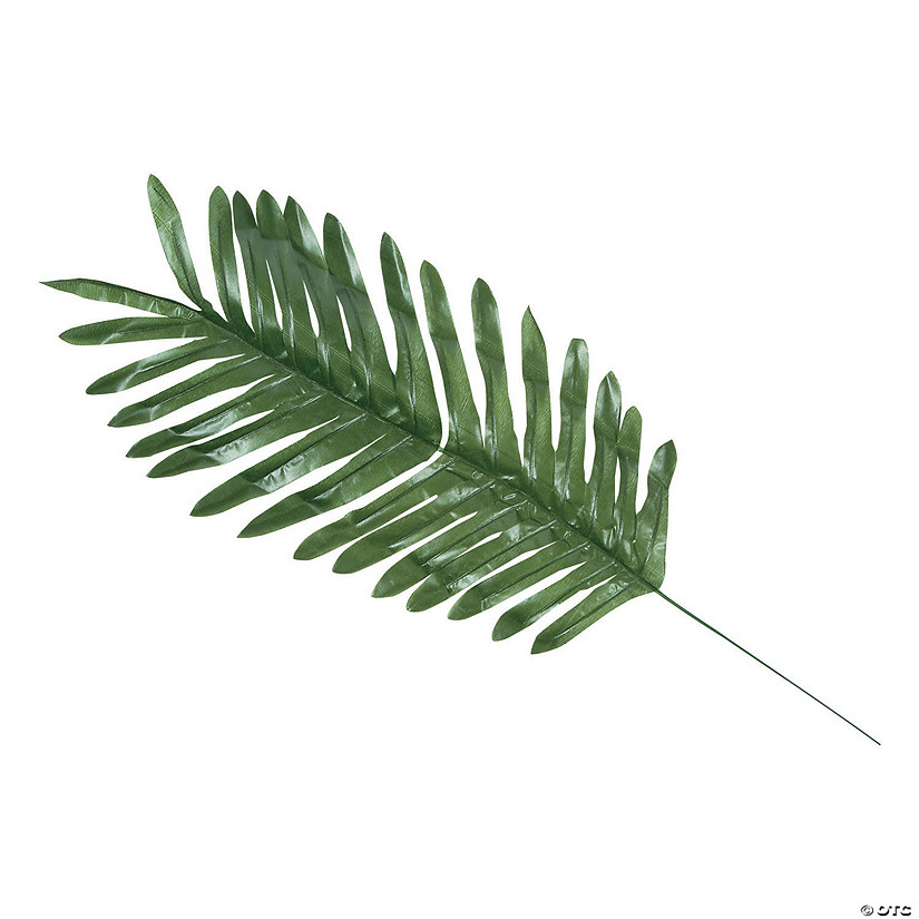 large palm leaves