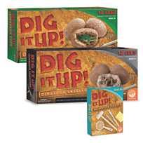 Dig It Up! Dinosaur Eggs | MindWare