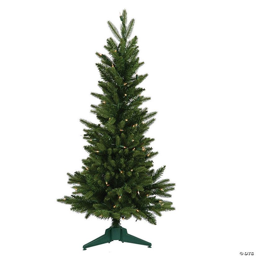 Frasier Fir Christmas Tree.Vickerman 36 Frasier Fir Christmas Tree With Clear Lights