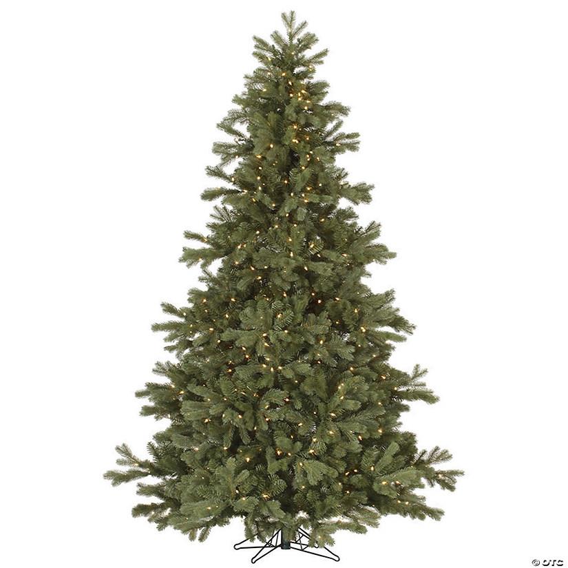 Frasier Fir Christmas Tree.Vickerman 7 5 Frasier Fir Christmas Tree With Clear Lights