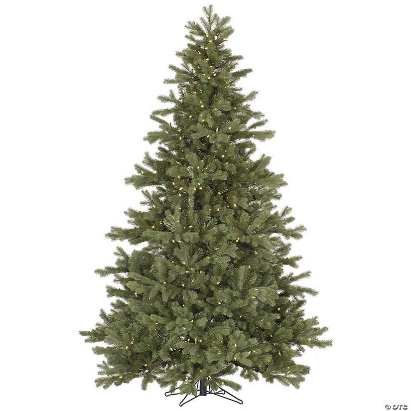 Frasier Fir Christmas Tree.Vickerman 7 5 Frasier Fir Christmas Tree With Warm White Led Lights