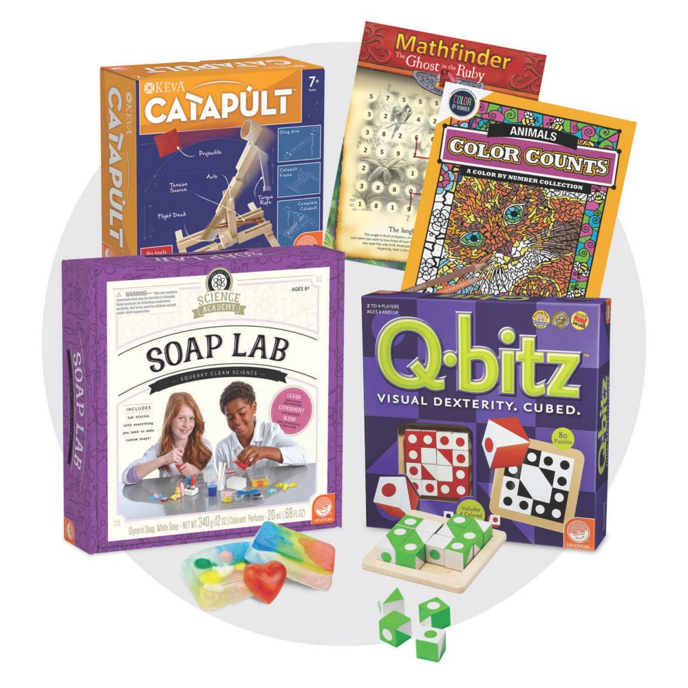 Brainy Bundle for Ages 8+ From MindWare